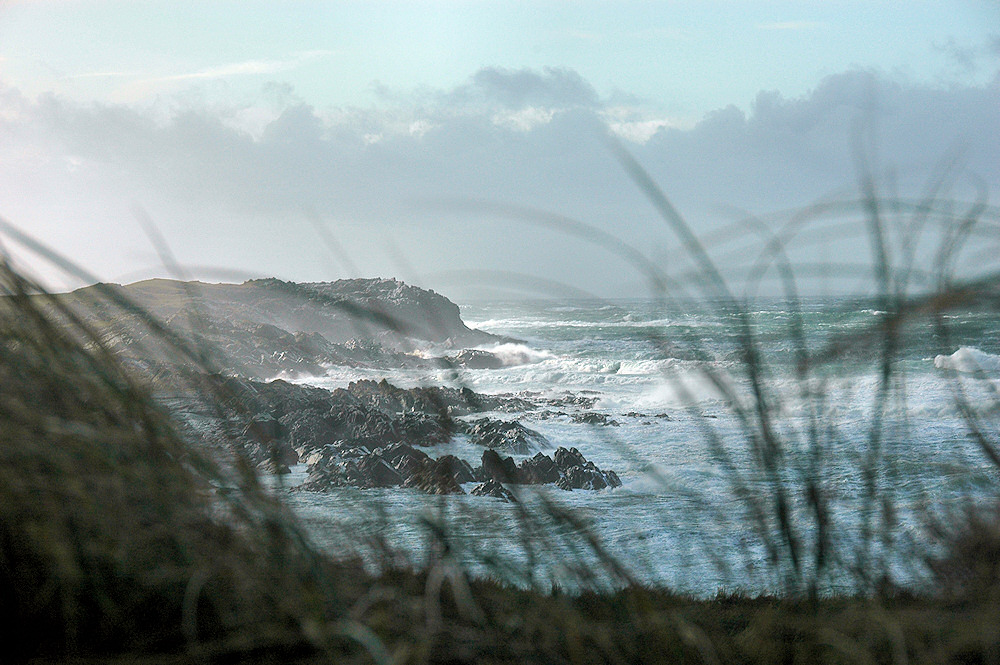 Picture of a bay in stormy weather with breaking waves, seen through dune grass