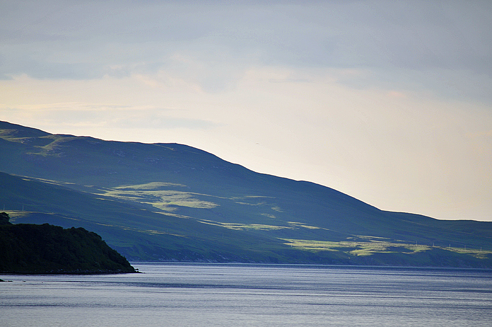 Picture of a hillside next to a sound in the June evening light