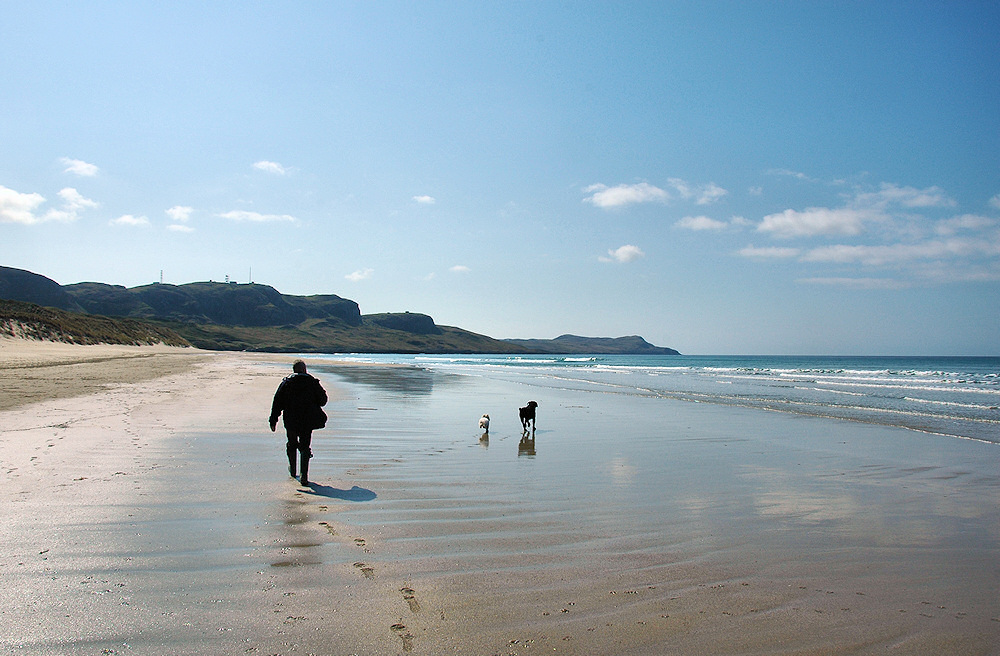 Picture of a man walking dogs on a beach