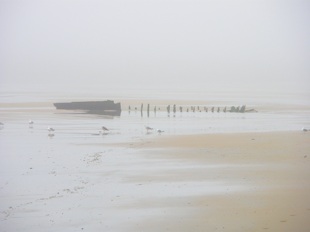 Picture of a wreck on a beach in the fog