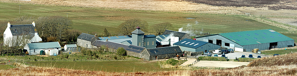 Picture of a whisky distillery on a farm