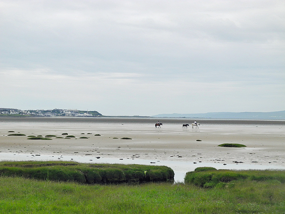 Picture of two people riding horses with a third on a lead at low tide on a sea loch