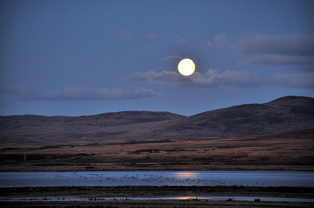 Picture of a moonrise over a bleak landscape
