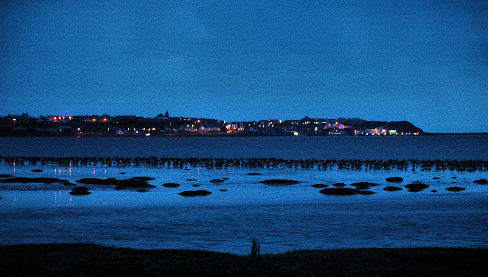 Picture of a coastal village at last light, Barnacle Geese can seen at their roost in front
