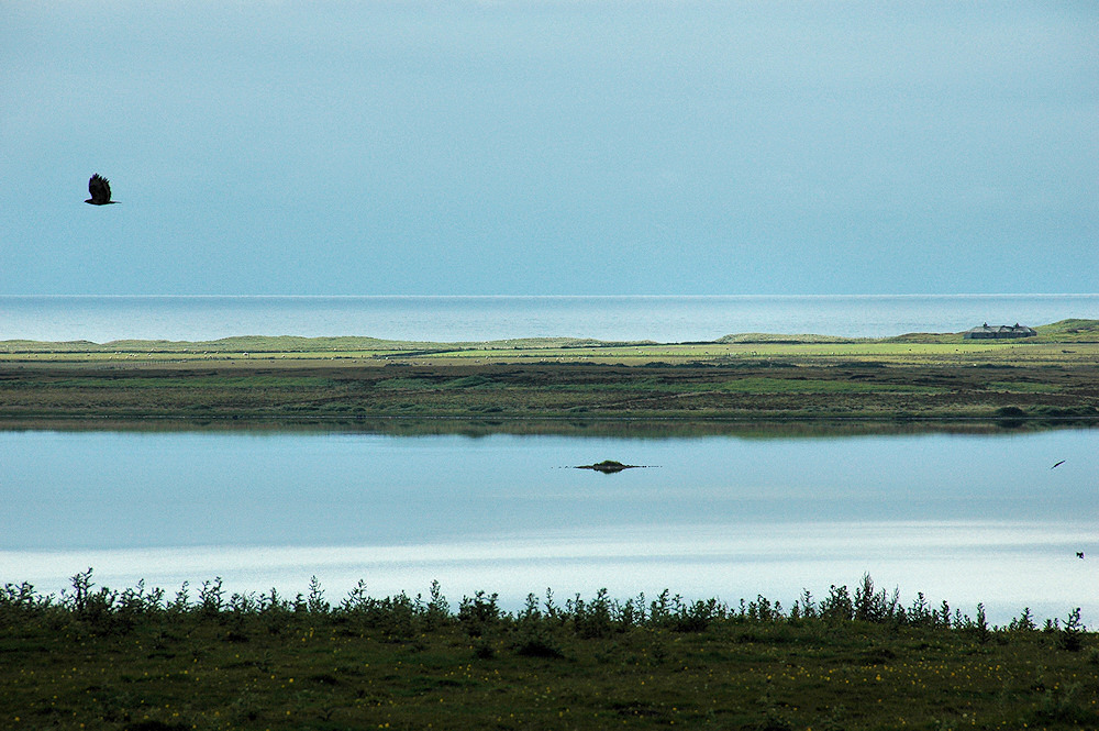 Picture of a very calm freshwater loch, in the distance open sea is also visible