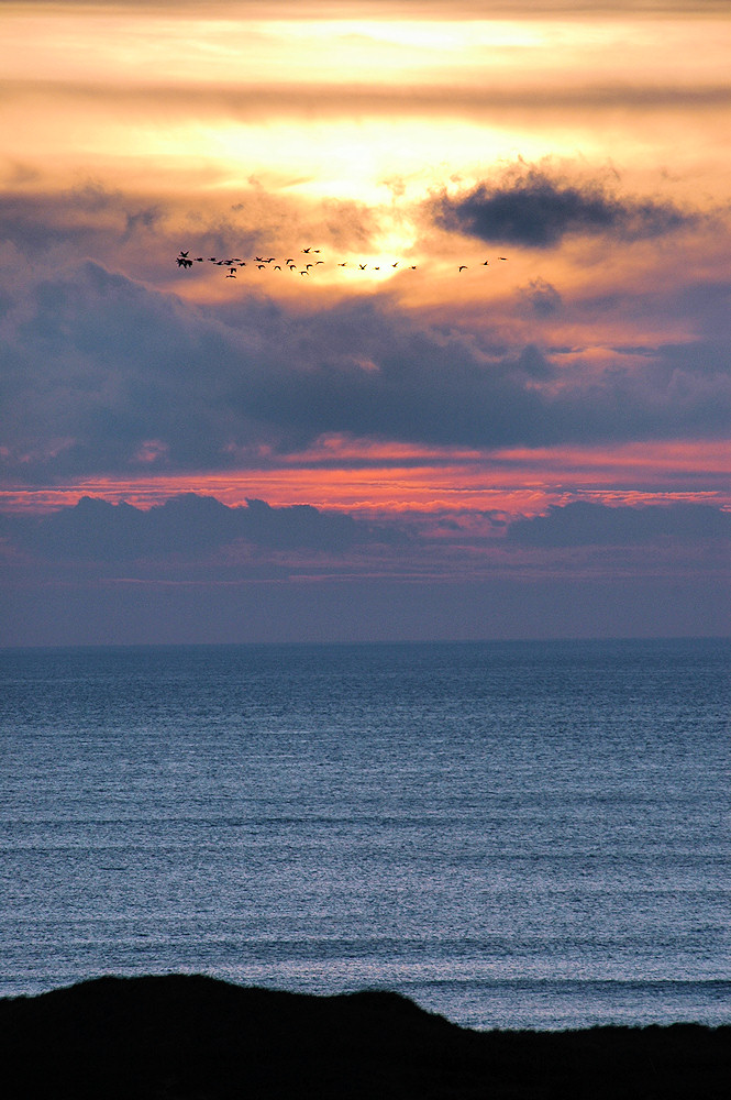 Picture of a cloudy sunset with a small flock of Geese passing