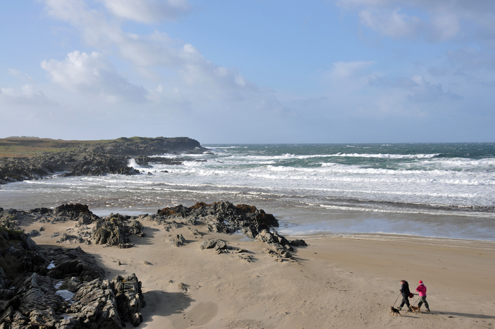 Picture of a bay with a sandy beach and waves rolling in. two people walking their dogs on the beach