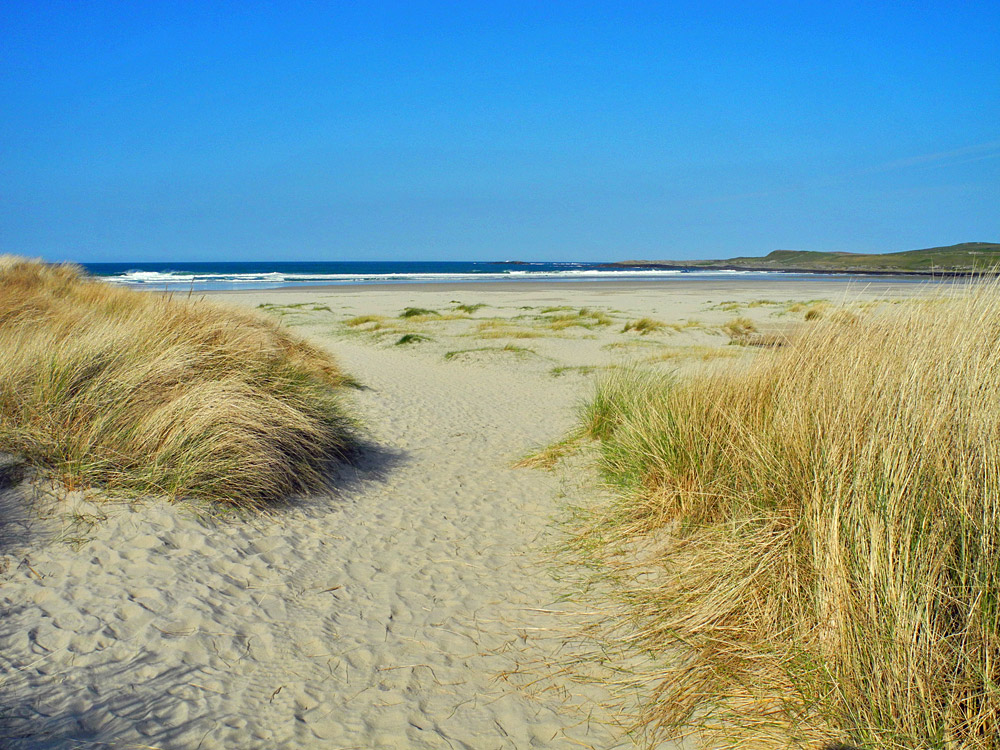 Picture of a path through dunes leading on to a beach, all in beautiful sunshine