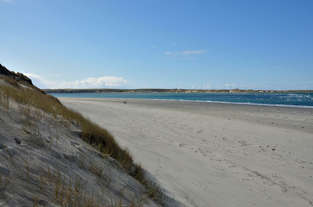 Picture of a view from dunes down to a beach, two walkers passing in the distance