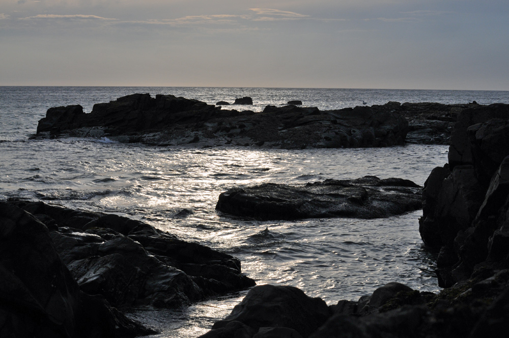 Picture of a rocky shoreline in the evening light
