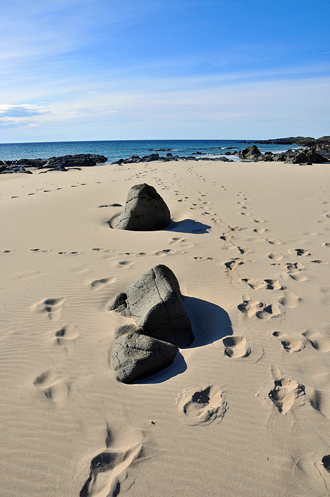 Picture of rocks on a sandy beach, footprints going around them