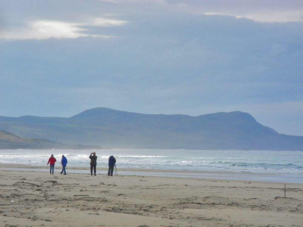 Picture of visitors taking pictures on a beach under dark clouds