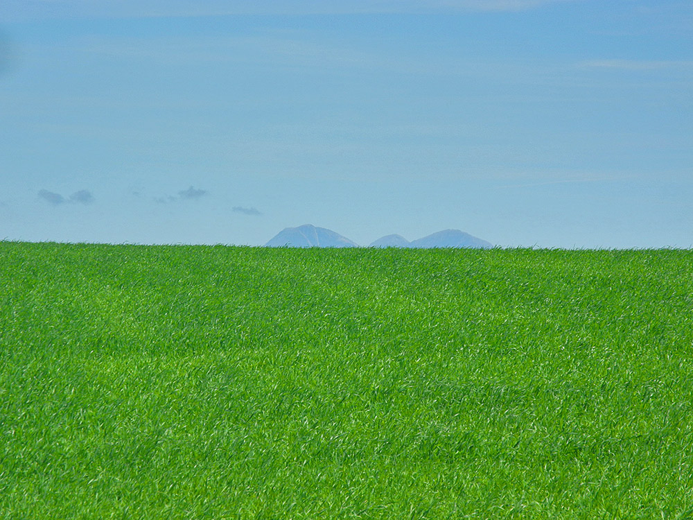 Picture of three mountain tops showing behind a green field