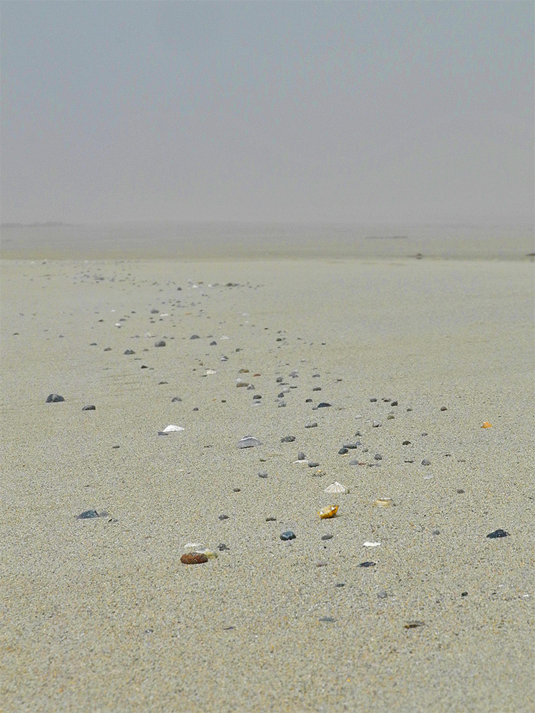 Picture of a string of shells and stones on a beach
