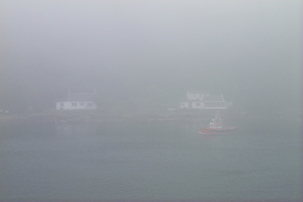 Picture of a coastal landscape with two houses in thick fog