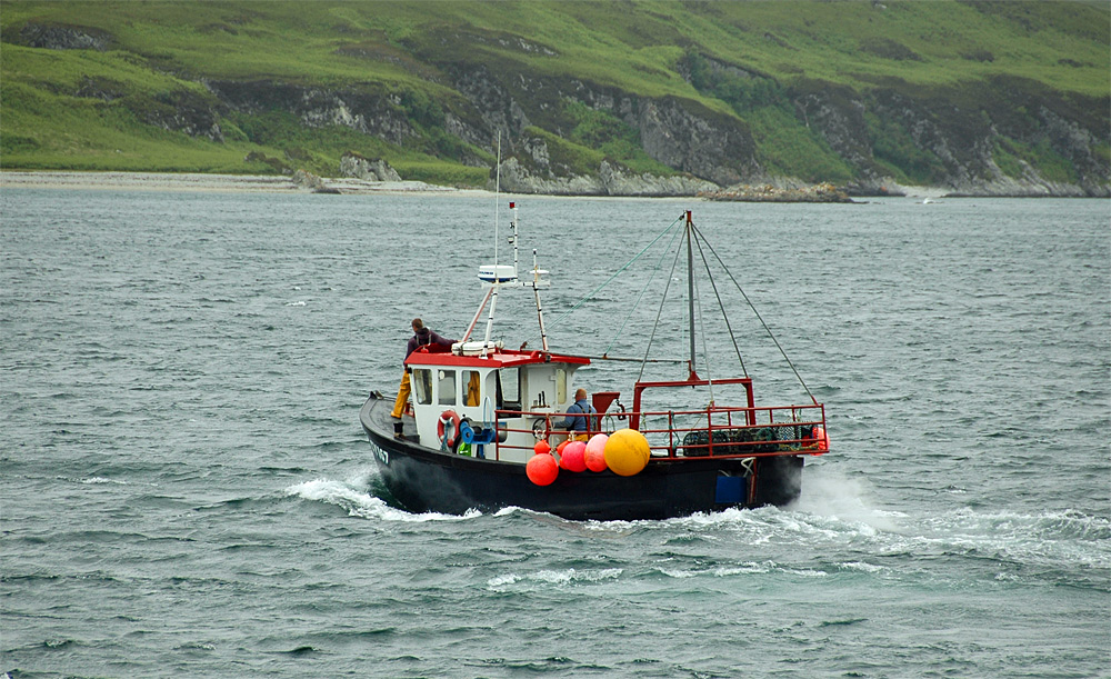 Picture of a small fishing boat cruising into a bay