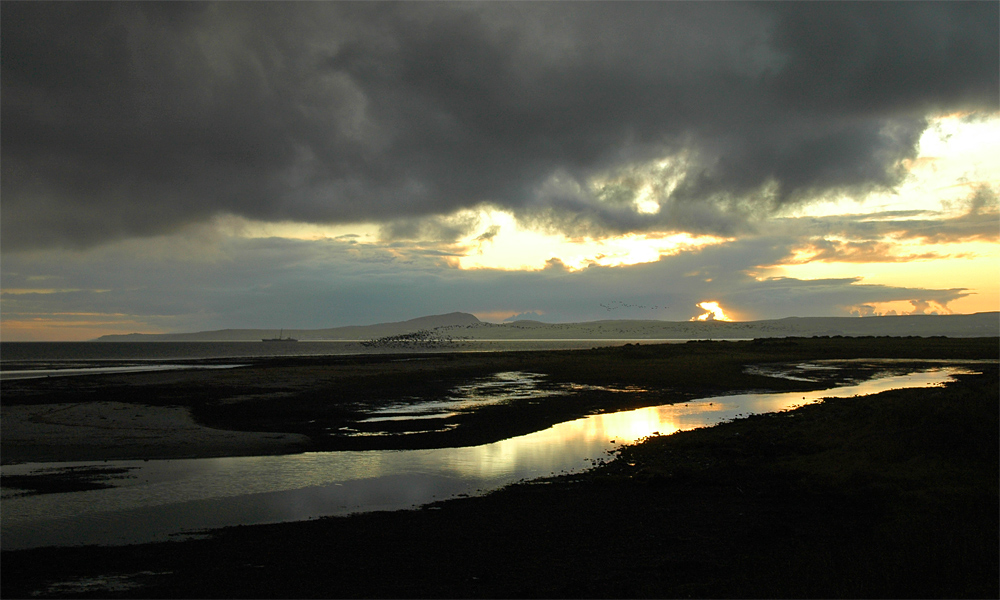 Picture of dark clouds at sunset over a sea loch, a flock of geese passing
