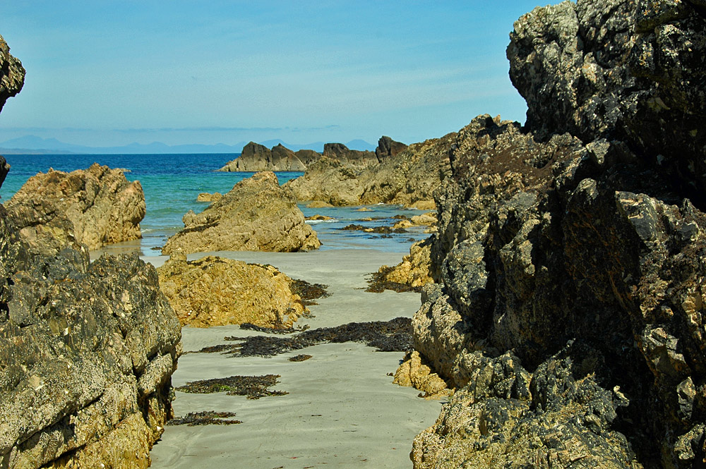 Picture of a rocky shoreline with sandy patches