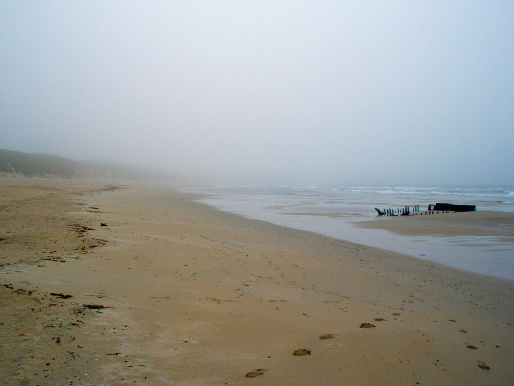 Picture of a beach with a wreck on a foggy day