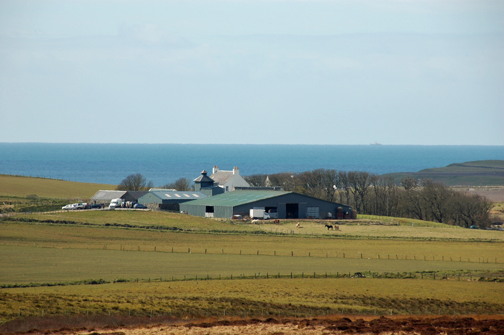 Picture of a distillery at a farm, seen across field. The sea in the background