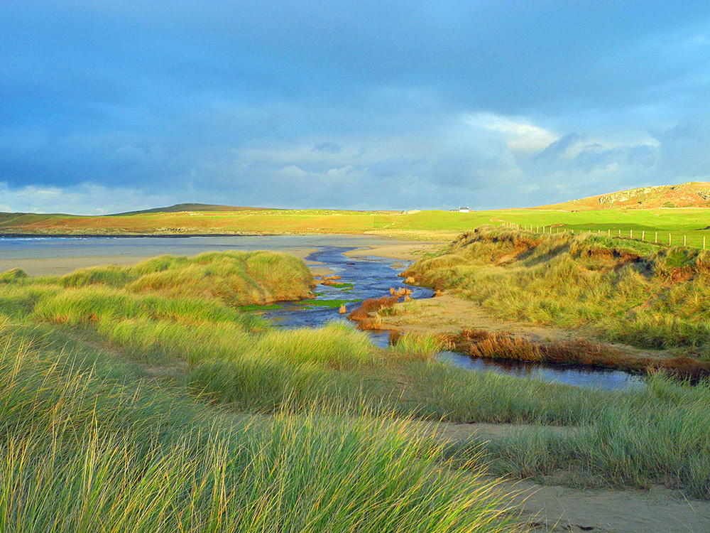 Picture of a river crossing through dunes to a beach in the morning sun