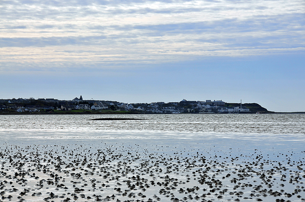 Picture of a coastal village seen from mudflats during low tide