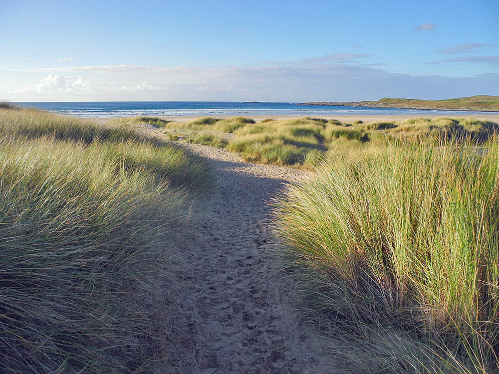 Picture of a path through dunes to a beach in the mild morning sunlight
