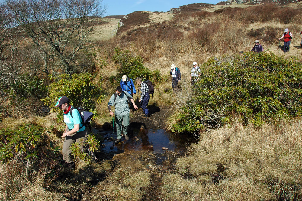 Picture of a group of walkers crossing/wading a burn in a wild landscape