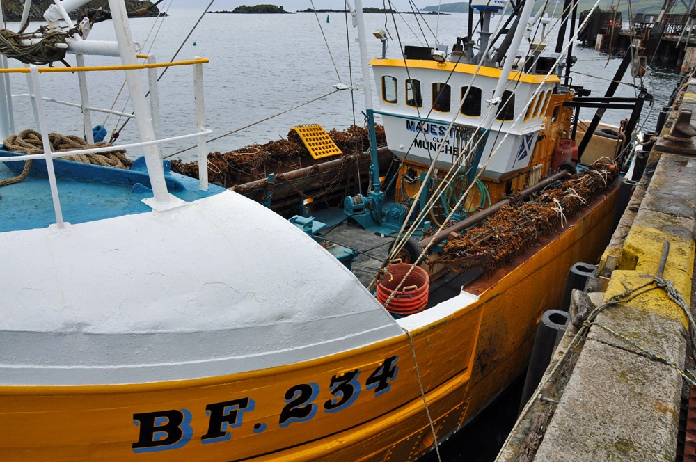 Picture of a yellow and white fishing boat named Majestic III