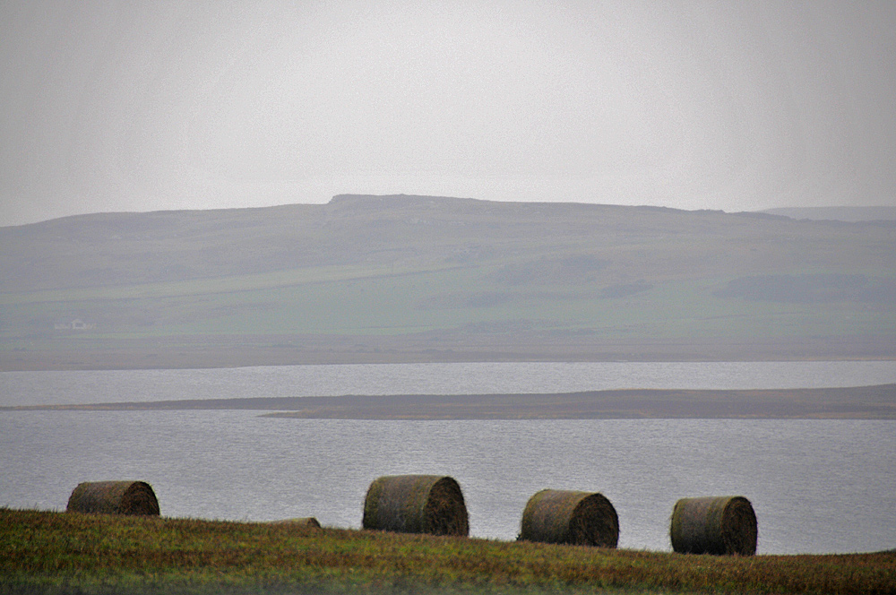 Picture of a few hay bales on a field above a loch (lake)