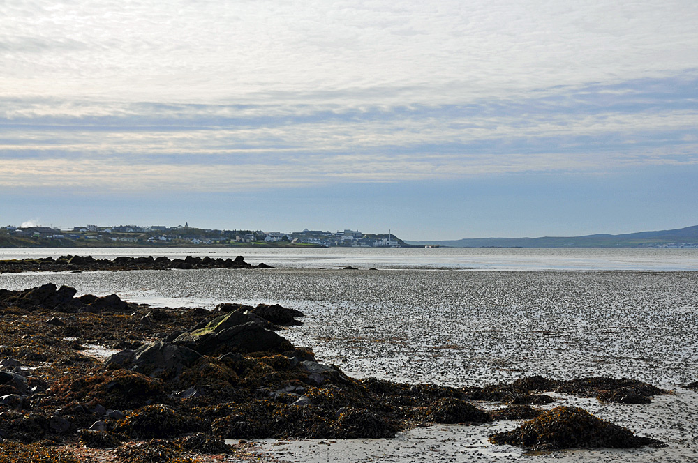 Picture of a coastal village seen from a rocky shore with mudflats