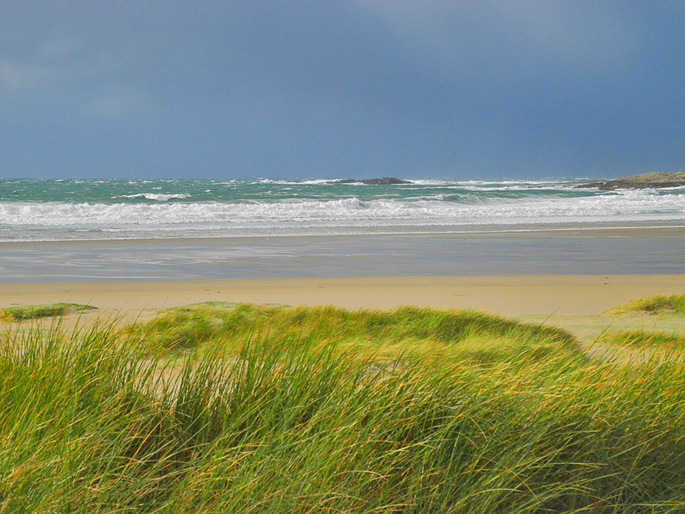 Picture of a view out to sea from dunes backing a beach