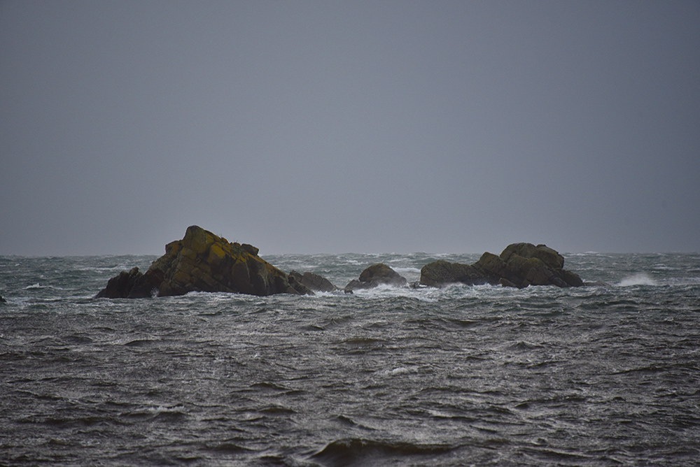 Rocks off Laphroaig on a November afternoon, Isle of Islay