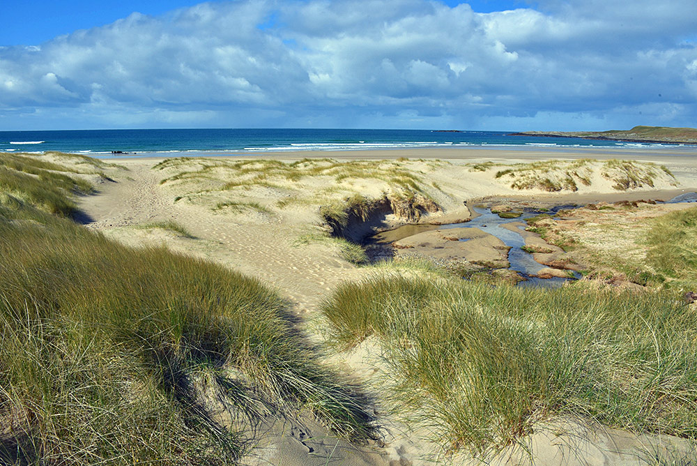 Picture of a path through dunes leading to a sandy beach in a bay