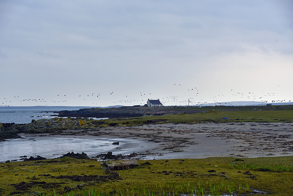 Picture of a lone house in a coastal landscape