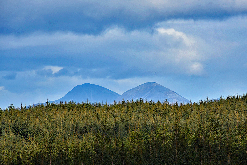 Picture of two round mountains behind some woodland