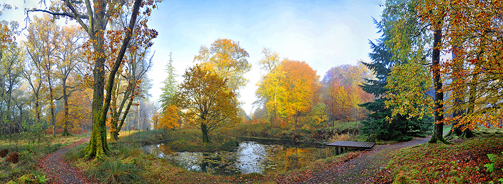 Panoramic picture of an autumn scene at a pond in a tree garden