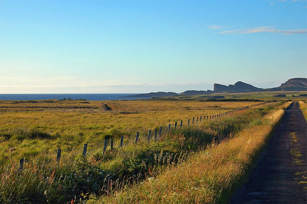 Picture of a single track road near a coast