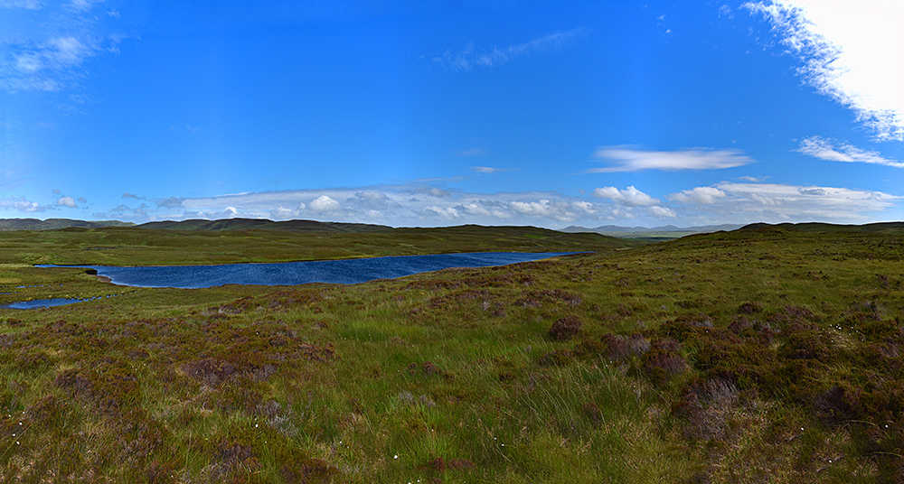 Panoramic picture of a loch in a heathery landscape