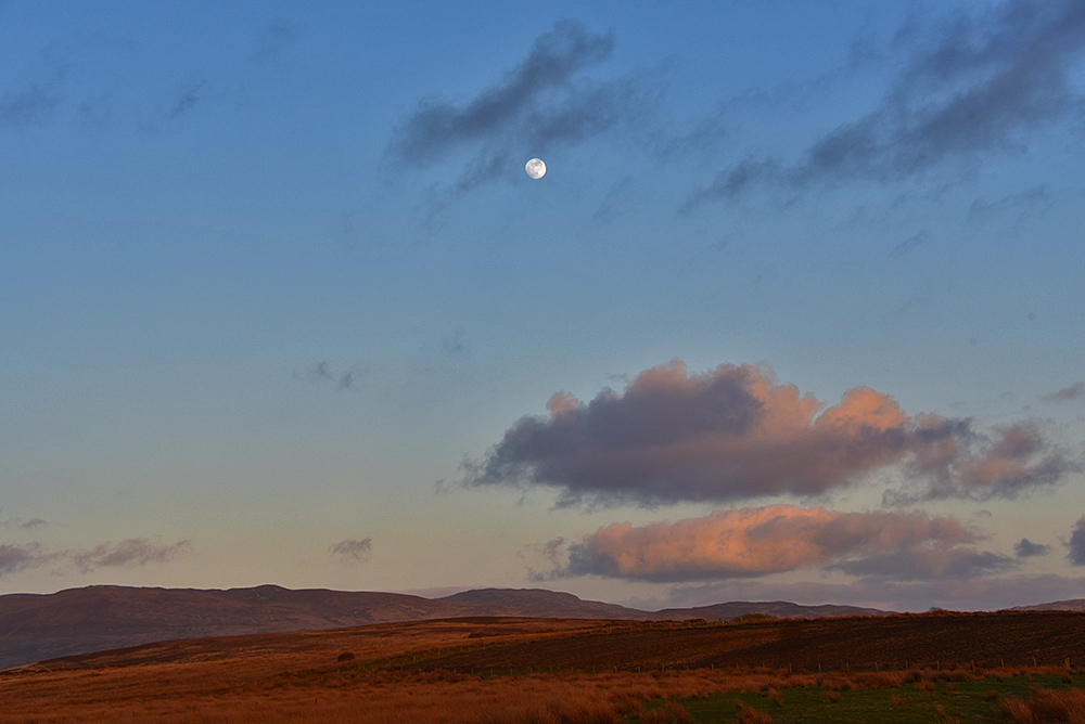 Picture of the Moon high in the evening sky over a wide landscape