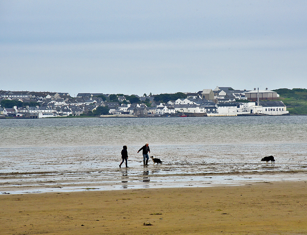 Picture of two people walking two dogs out on a sea loch at low tide
