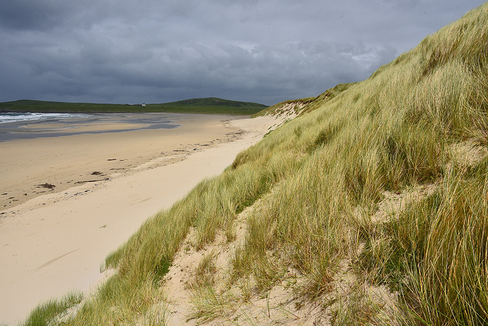 Picture of a dune in bright light in front of dark clouds in the distance
