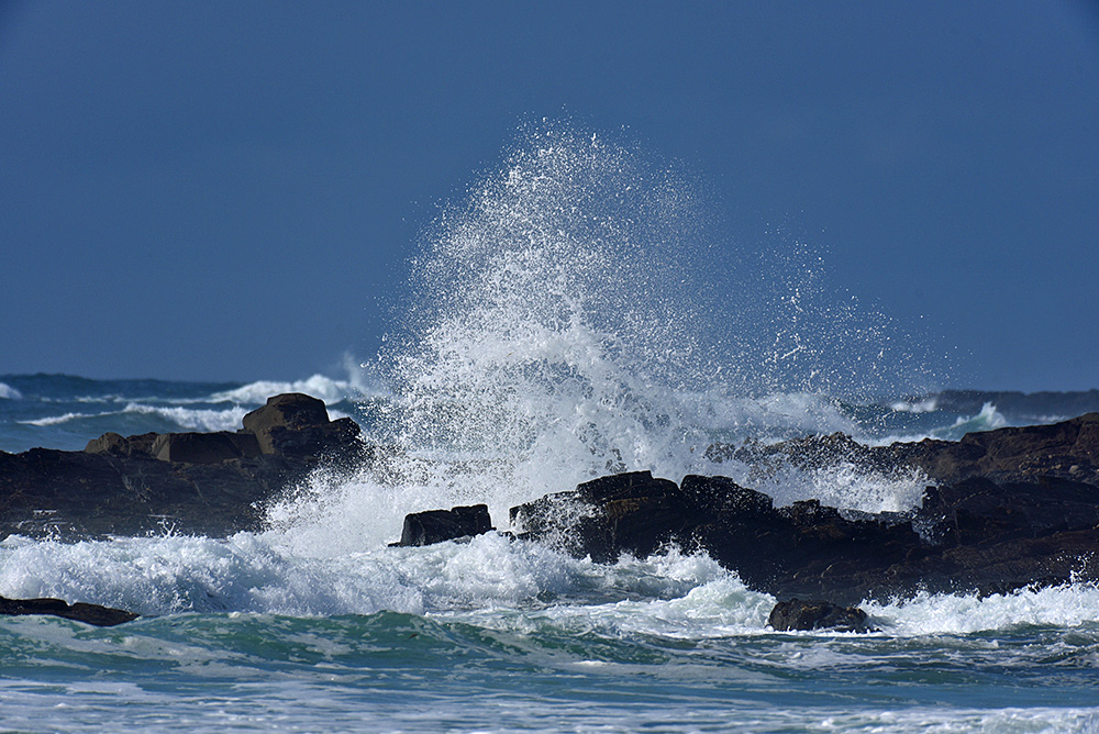 Picture of a wave breaking over rocks, sending spray high into the air in a big splash