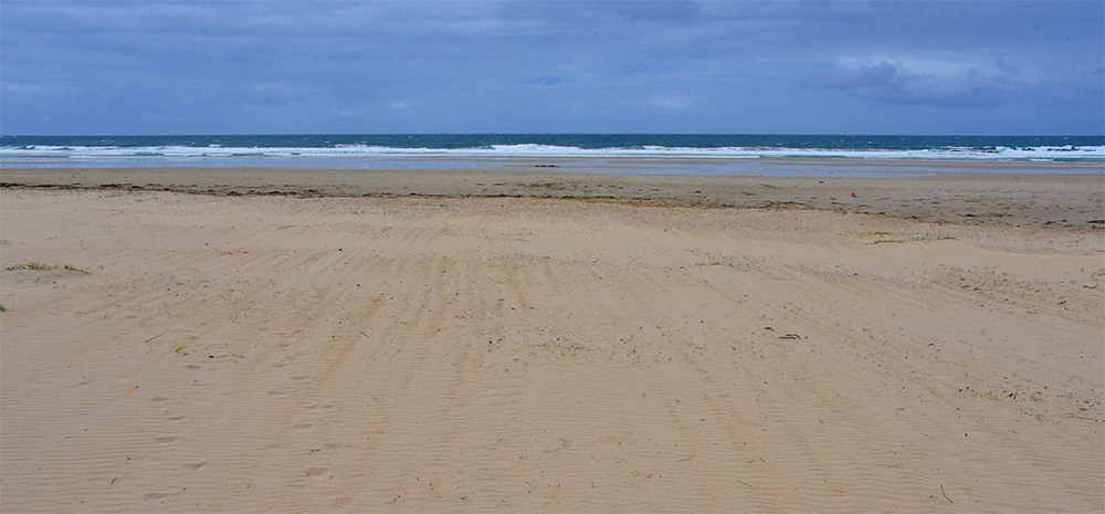 Picture of a beach with windblown sand on an overcast day