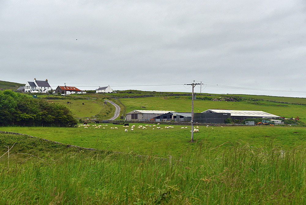 Picture of Octomore Farm on the side of a low hill