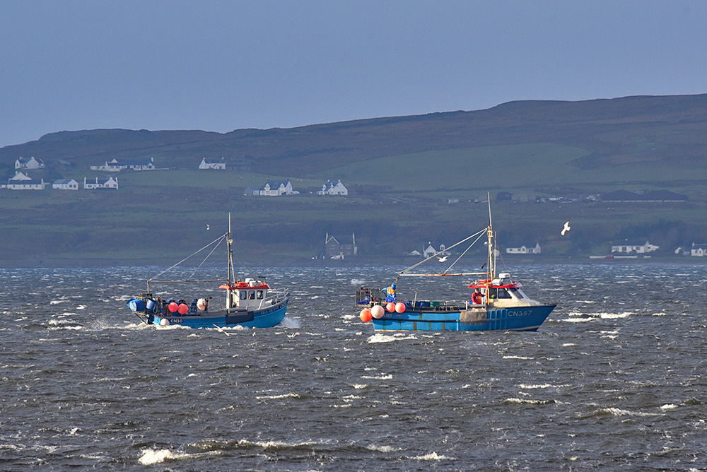 Picture of two fishing boats on a blustery day in a sea loch, houses in the distance