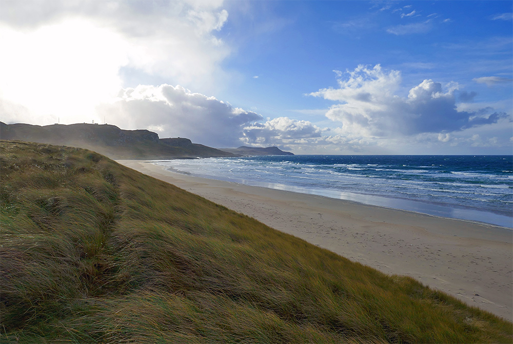 Picture of a long golden sandy beach seen from the dunes behind it