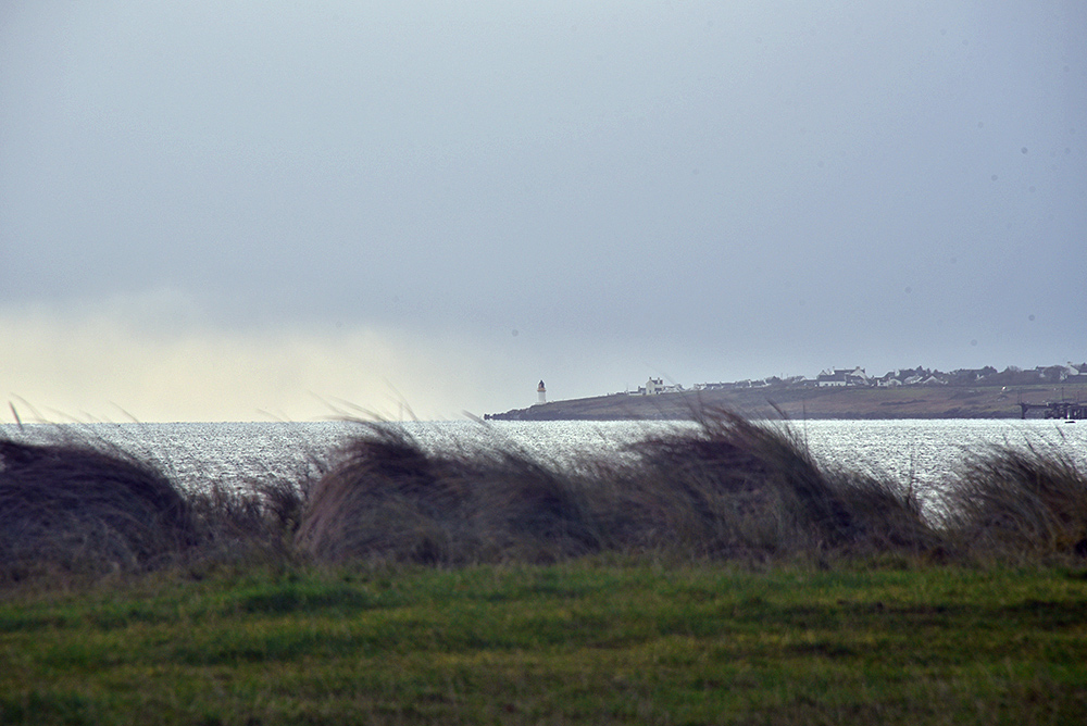 Picture of a small lighthouse on the shore of a sea loch, seen from behind some vegetation