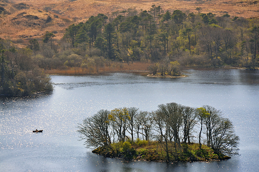 Picture of a rowing boat near a small island in a loch (lake)