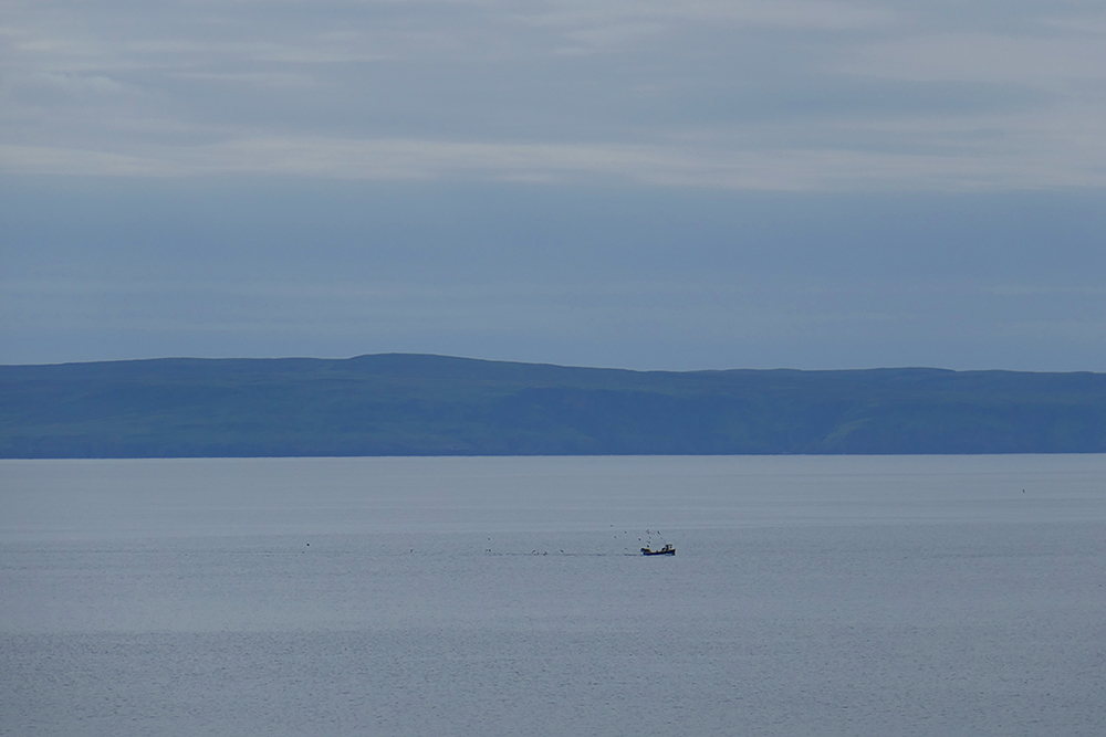 Picture of a distant small fishing boat followed by birds in a wide sea loch